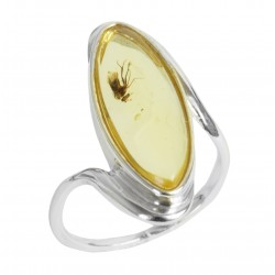 Honey amber ring with insect inclusion