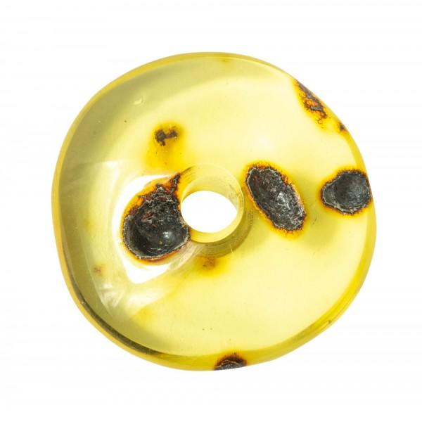 Colgante con 2 reales ámbar inclusiones de insectos